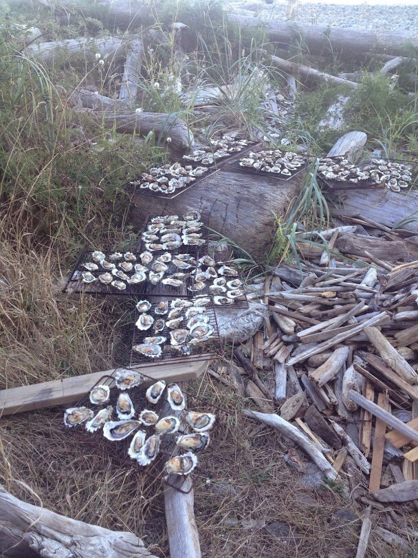 local-oysters-ready-for-bbq